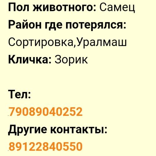 20200323_191343.jpg