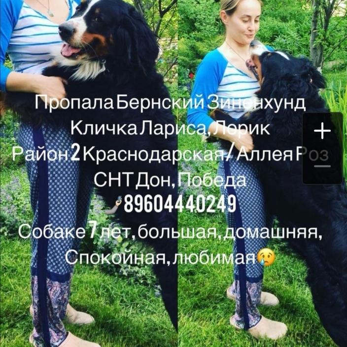 20210108_104010.jpg