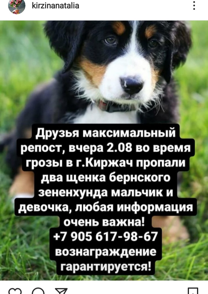 20210803_111304.jpg