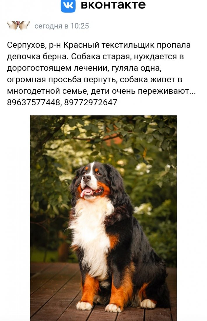 20210821_220555.jpg